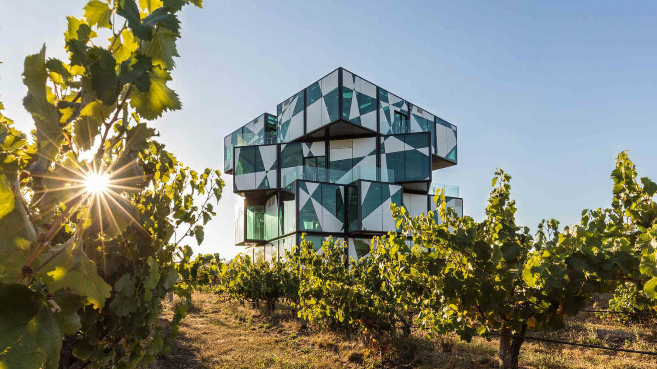 Adelaide and McLaren Vale Experience