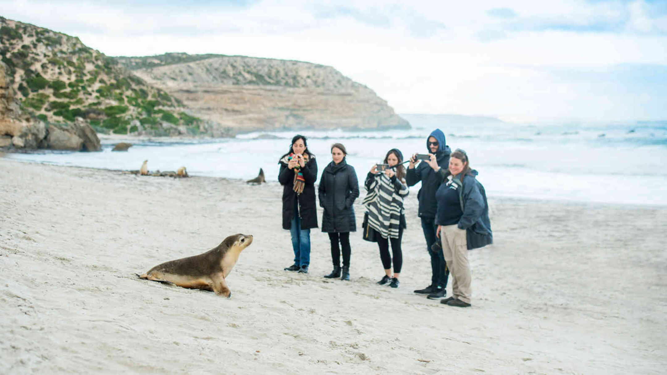 Adelaide and Kangaroo Island Escape