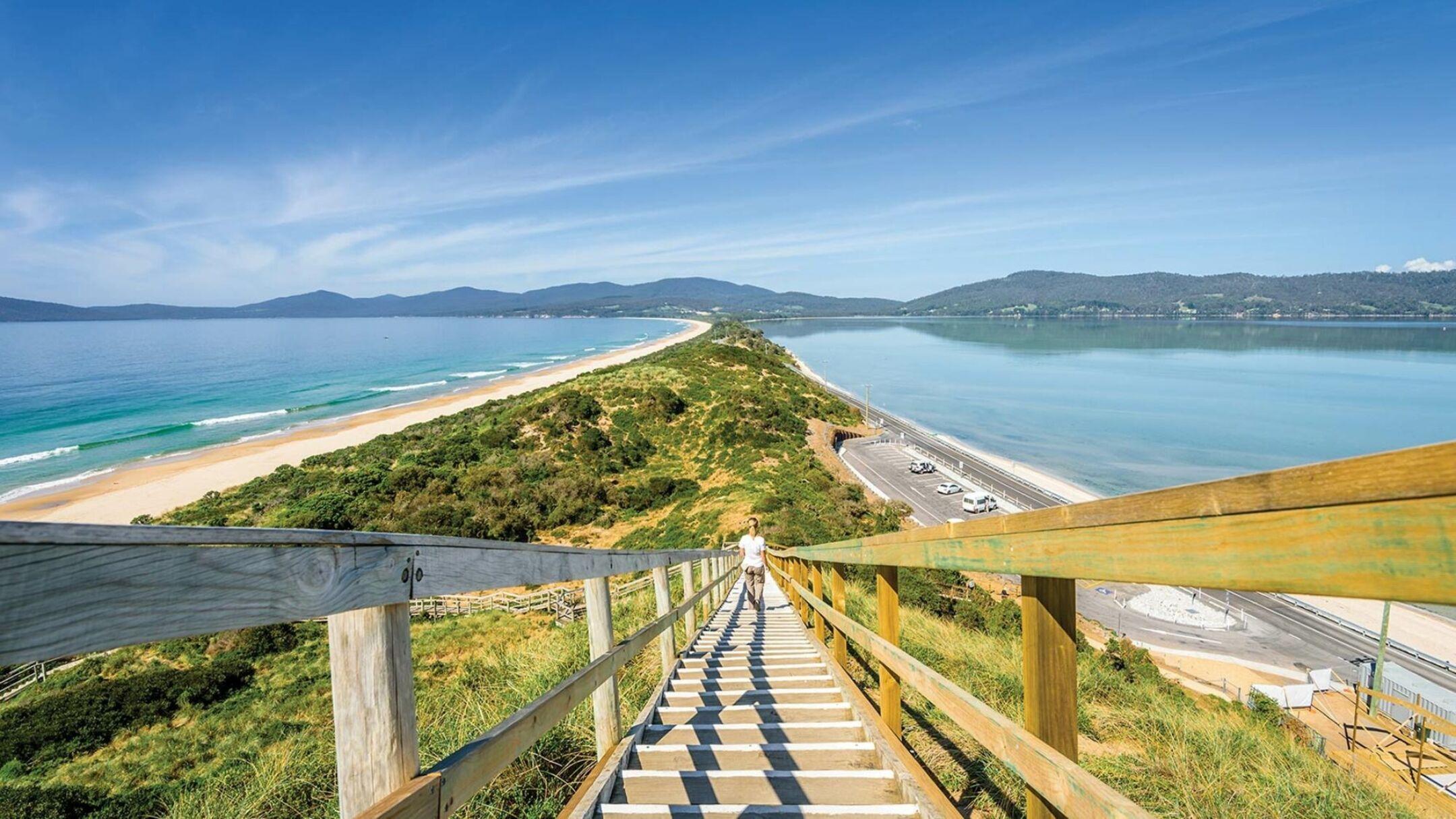 Hobart and Bruny Island Eco Experience