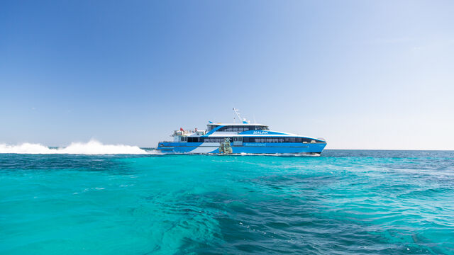 Rottnest Wild Seafood Experience - Departing from Fremantle